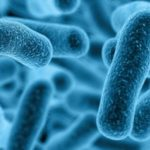 Bacterias al rescate
